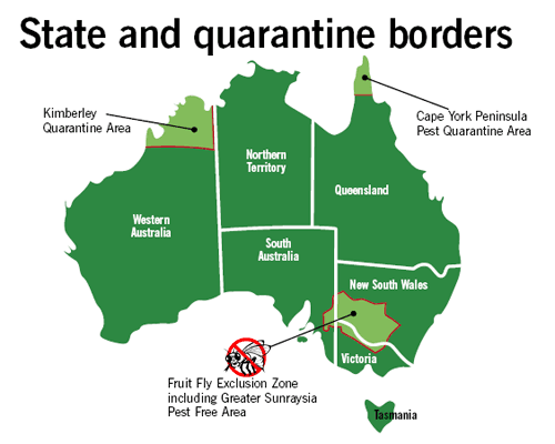 State quarantine borders | BSPC Removalists